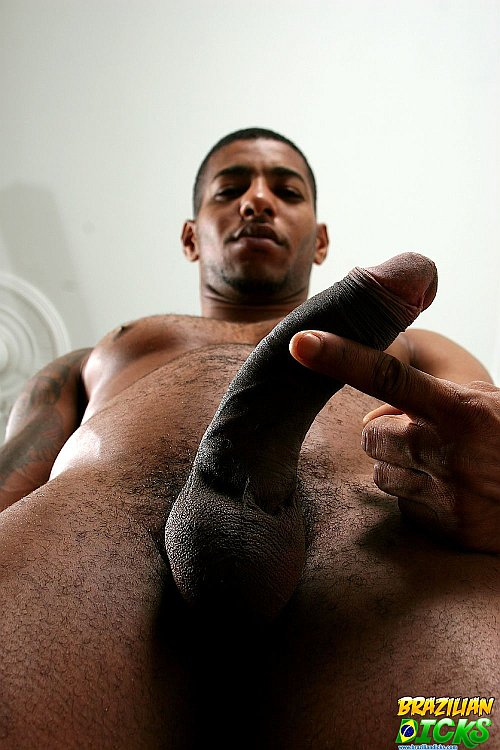 He had a blast with his other gay xxx brothers as they took control of that ...
